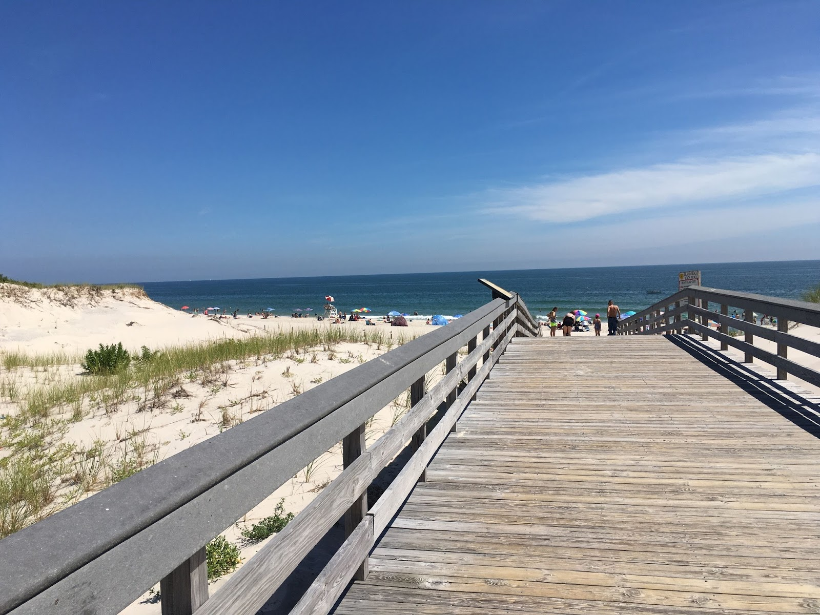 Endangered New Jersey: New Jersey State Parks