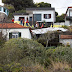 Portugal: 28 pessoas morrem em acidente com ônibus turístico