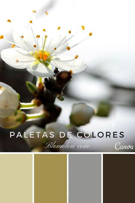 paletas_de_colores_mes_de_agosto_1