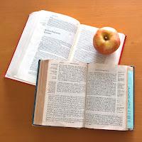 Bibel allein, Sola scriptura, Bibellesen