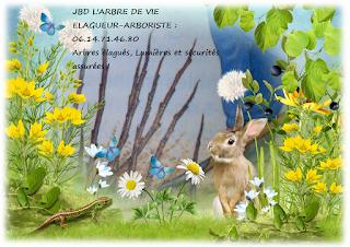 .http://larbredeviejbd.blogspot.fr/p/blog-personnel.html ______________________ JBD L'ARBRE DE VIE 06.14.71.46.80 Arbres élagués, Lumières et sécurités assurées ! Droits Protégés © par l'ADAGP