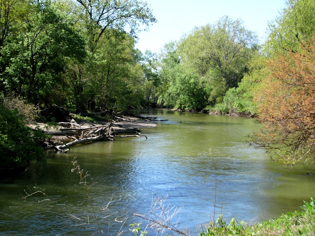 Flat Rock River - Mill Race Park