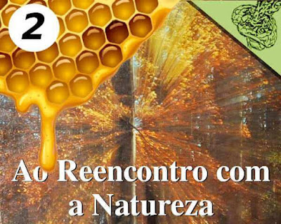 Ao Reencontro com a Natureza [2] - As formas da natureza.