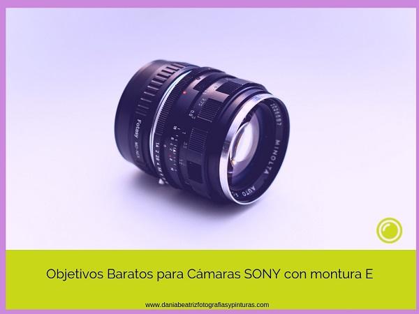 e522f678e7 Muchos fotógrafos se lamentan del alto precio que tienen los objetivos para  cámaras Sony mirrorless. Pero no hay nada más lejos de la verdad.