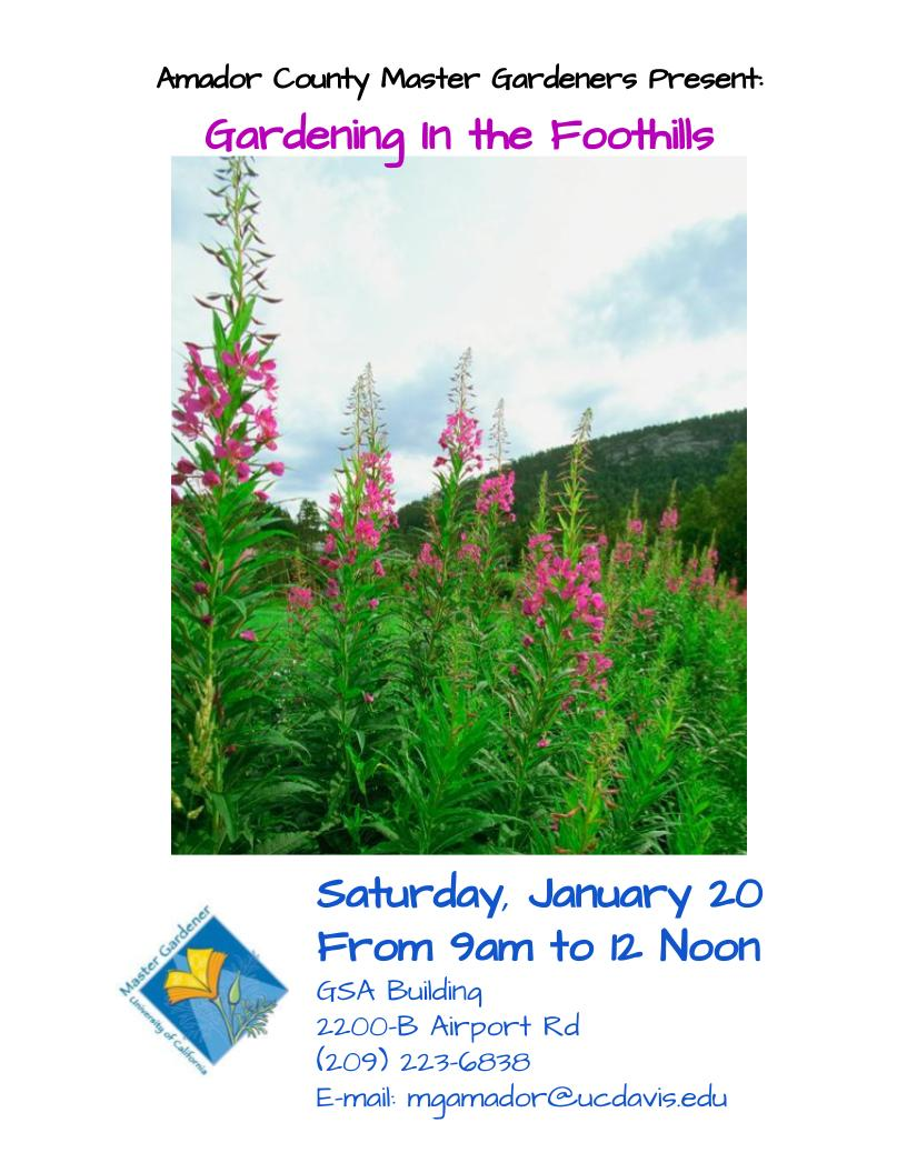 Master Gardeners Present: Introduction to Gardening in the Foothills - Sat Jan 20
