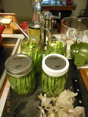 How to make Pickled Green Beans, preserving the harvest.