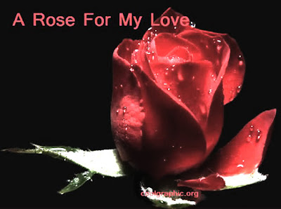 Happy Rose Day Images - Wallpapers -  Pictures - Pics For Him and Her