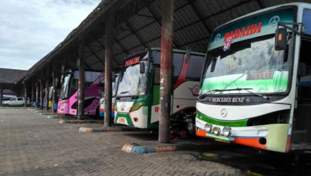 Jelang Natal, Tarif Bus Makassar ke Toraja Bakal Naik Hingga Rp200 Ribu