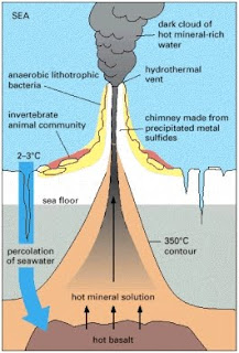 Hydrothermal Vents: February 2011