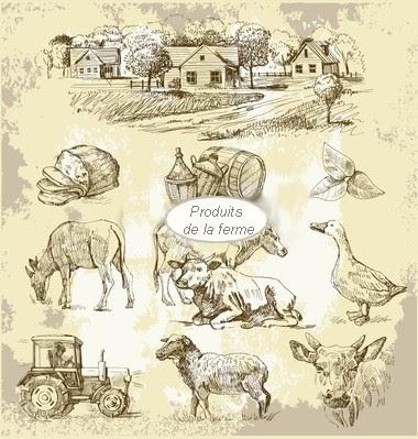 produits de la ferme, les fromages