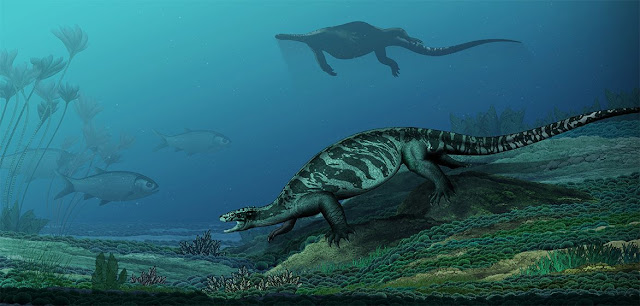 Pesquisadores encontram fóssil de tartaruga sem casco de 230 milhões de anos