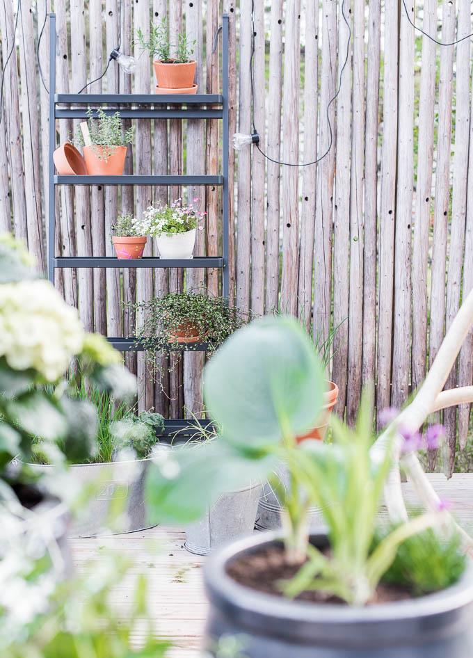 ikea salladskål, kukkateline, yrittitarha, kaupunkipuutarha, heinäseiväsaita