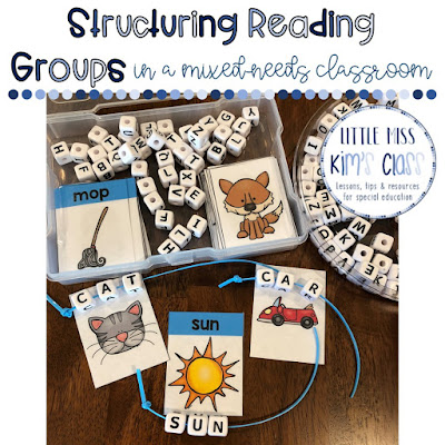 Reading Groups in Special Education