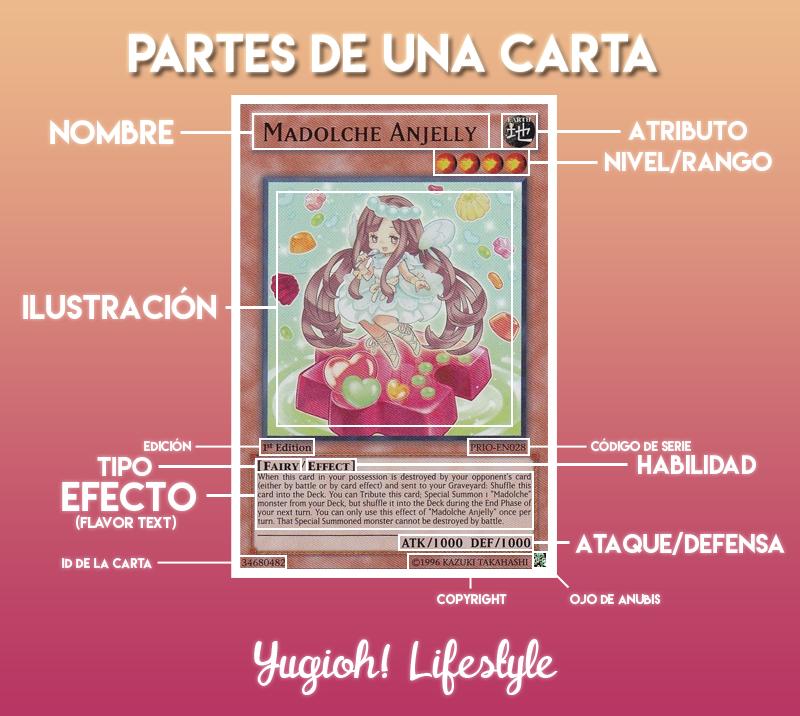 Guía] Aprendiendo a jugar Yu-Gi-Oh! Capítulo 1: Las Cartas. | Yugioh ...