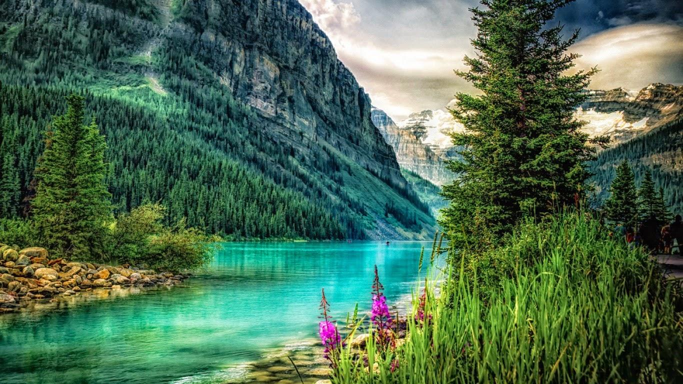 Meilleurs fonds d 39 crans paysages et fleurs fond ecran pc for Image hd pour pc