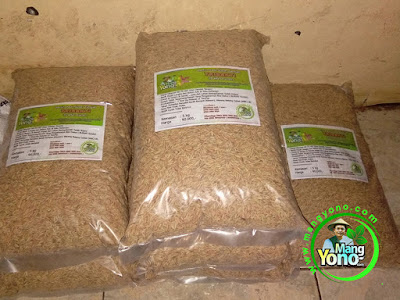 SUSILO WIBOWO Probolinggo, Jatim.   Pembeli Benih Padi TRISAKTI 75 HST Panen.  10 Kg atau 2 Bungkus