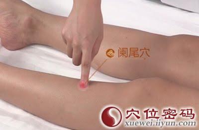 闌尾穴位 | 闌尾穴痛位置 - 穴道按摩經絡圖解 | Source:xueweitu.iiyun.com