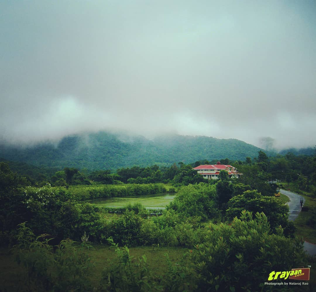 A trip to Coorg during Monsoon