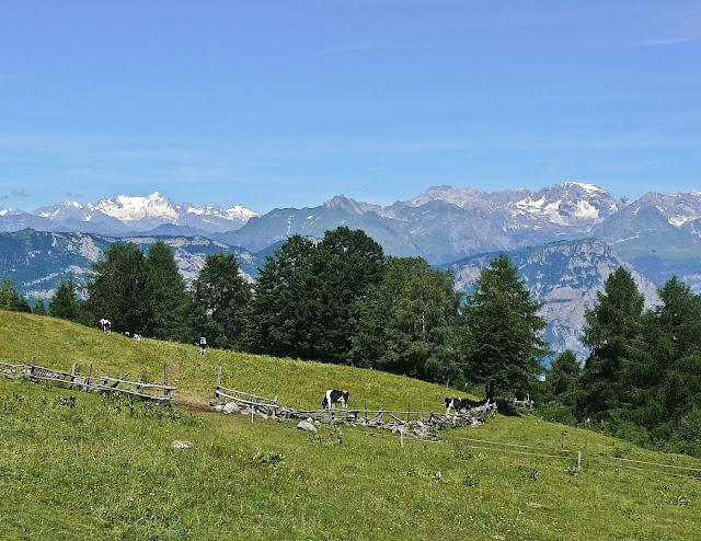 Altogarda Trentino MTB