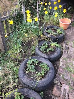 Tyre planters