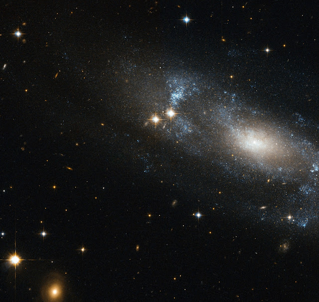Spiral Galaxy ESO 499-G37