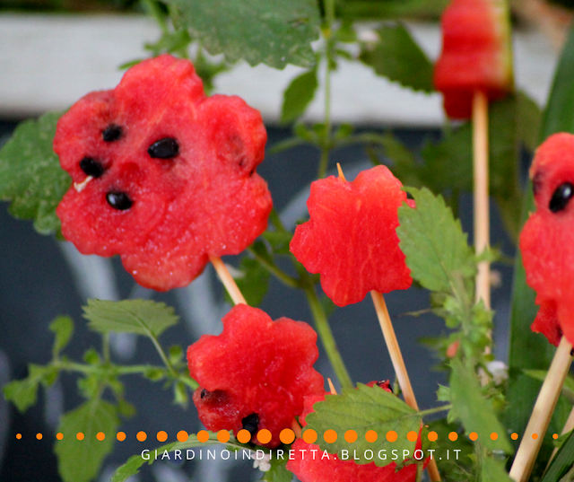 fiori di anguria per un party in giardino - un giardino in diretta