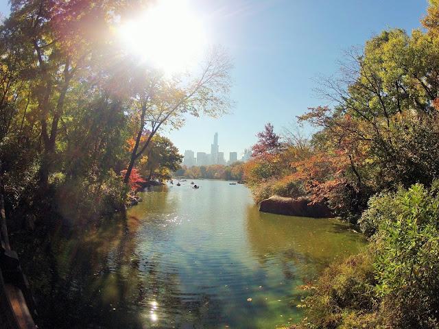 New-York central park