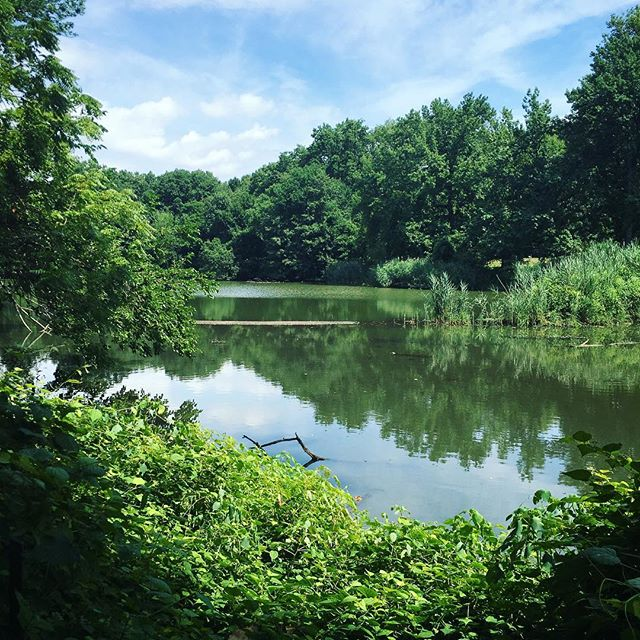 Clove Lakes Park Staten Island Places to Visit with Kids