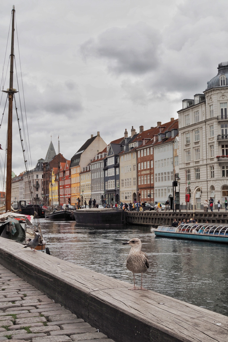 Le port de Copenhague : Nyhavn