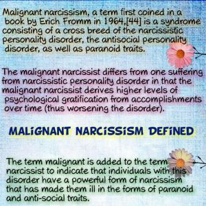 Estrangement Diaries: A Recovery Journal: A narcissist
