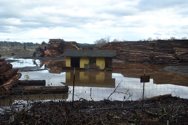 flooded lumber yard