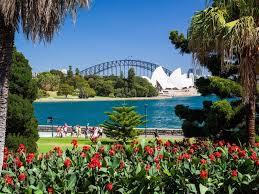 My Morning Cup Virtual Australia Sydney Royal Botanical Gardens