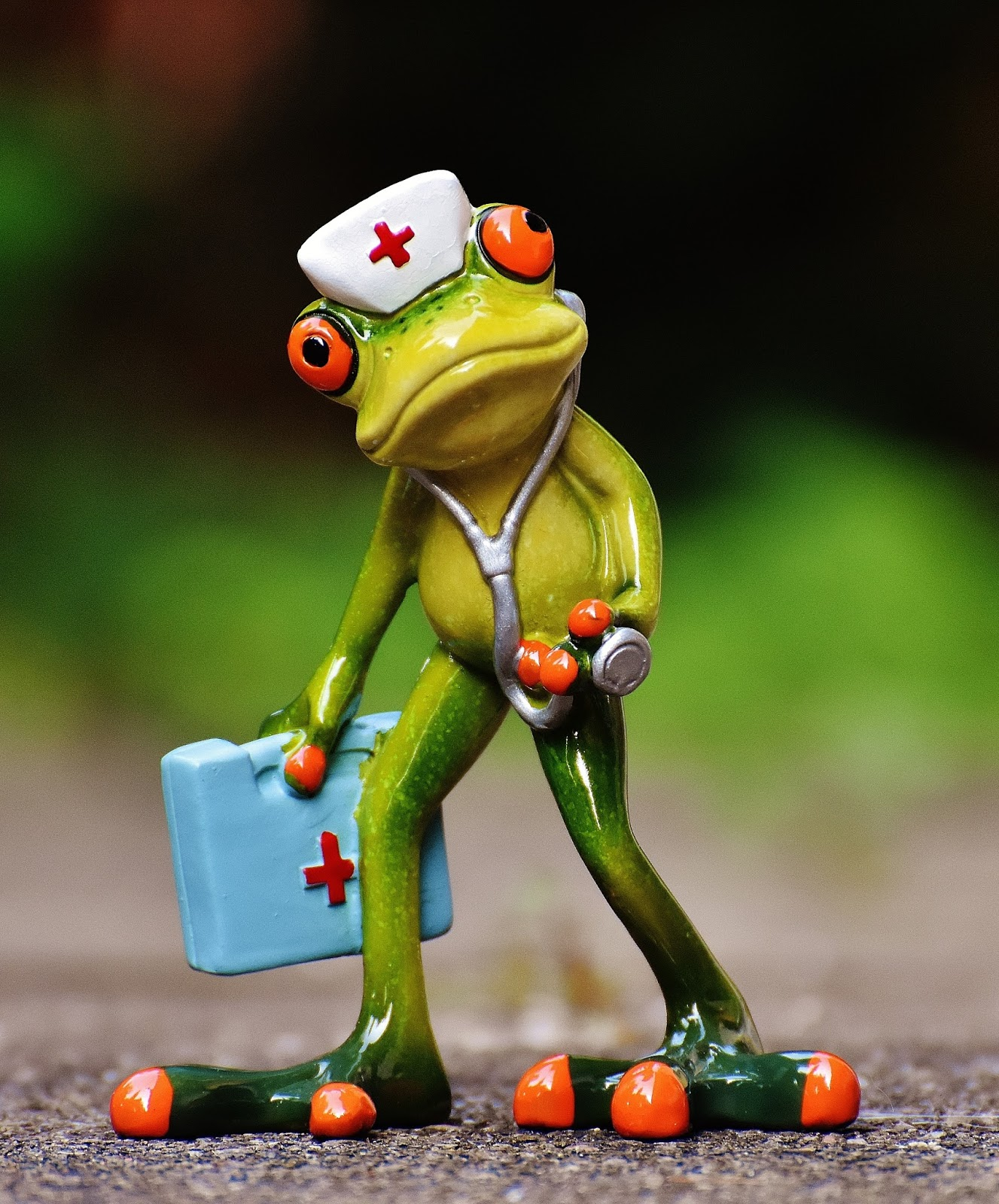 Funny picture of a frog doctor.