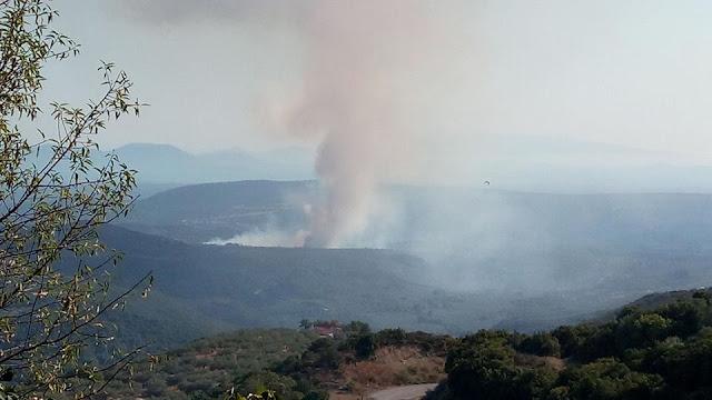 Αποτέλεσμα εικόνας για Φωτιά και στα Τζουμέρκα