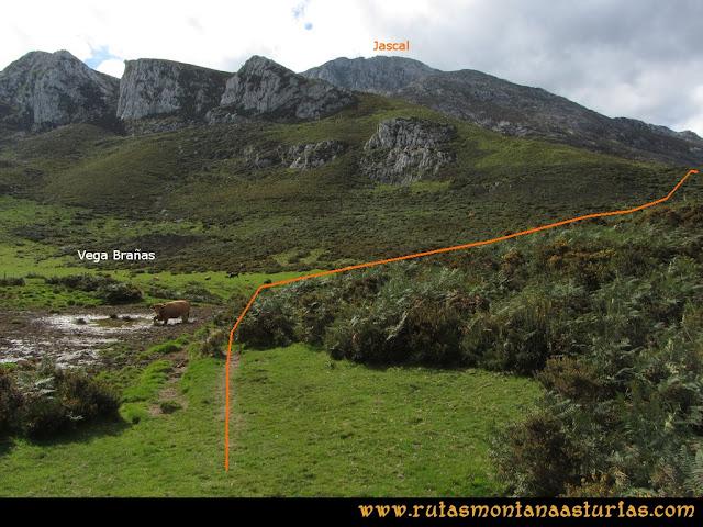Ruta al Cabezo Llerosos desde La Molina: Vega Brañas
