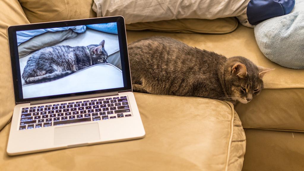 Laptop Gampang Panas? Coba Beberapa Tips ini