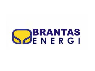 Lowongan Kerja PT Brantas Energi (Persero) Terbaru Tahun 2018
