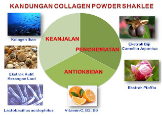 Kandungan Shaklee Collagen Powder
