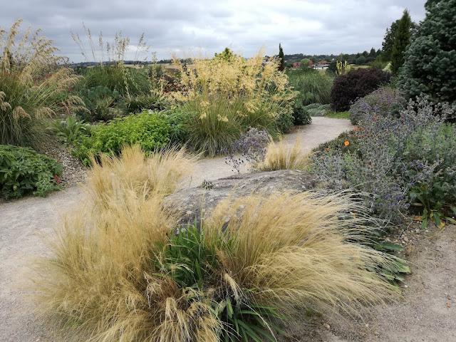 trawy ozdobne, żwirowa ścieżka w ogrodzie
