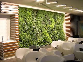 Vertical Garden - Indoor