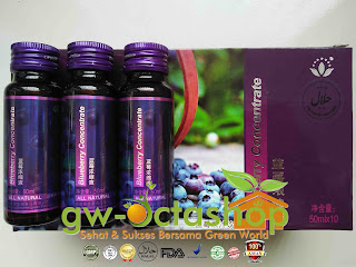 Green World Blueberry Concentrate