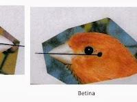 Tips Dan Trik Membedakan Jantan Betina Burung Kenari 99% Benar