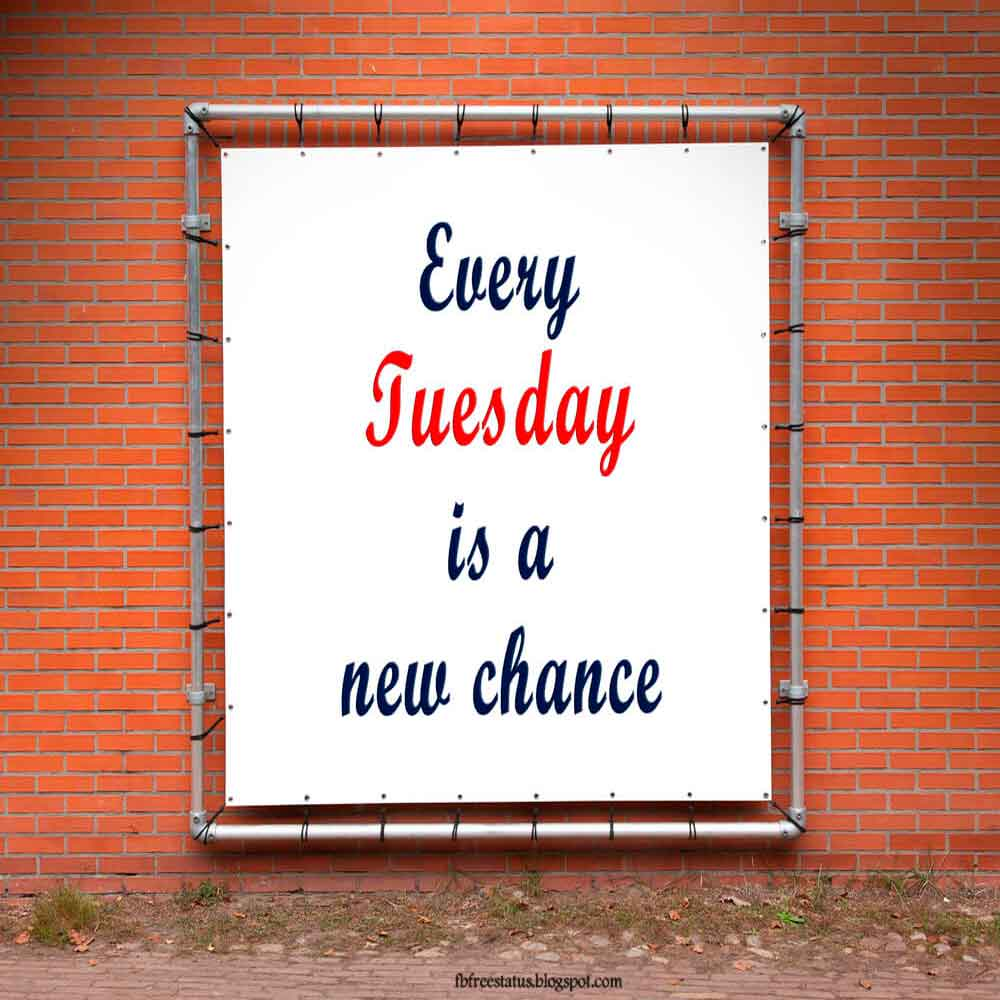 Every tuesday is a new chance.