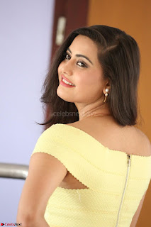 Shipra gaur in V Neck short Yellow Dress ~  041.JPG