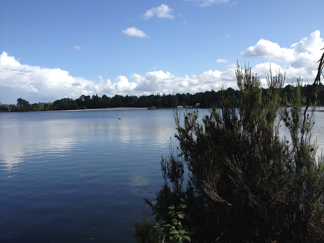 Excursion aux lacs d'Hostens