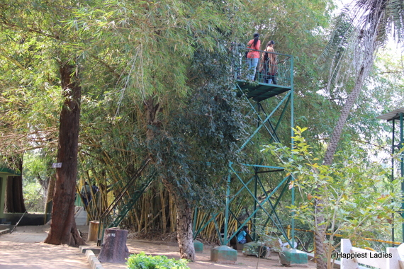 watch tower ranganathittu bird sanctuary