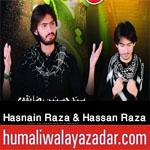 http://www.humaliwalayazadar.com/2017/09/syed-hasnain-raza-syed-hassan-raza.html