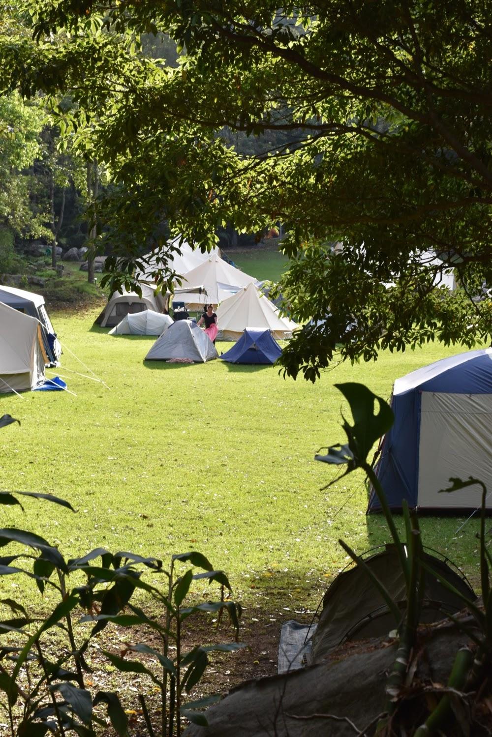 katiecrackernuts.blogspot.com.au || the beautiful Mount Keira campsite at Wild Rumpus Jamboree