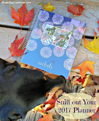 dog nose sniffing Plum Paper planner fall leaves