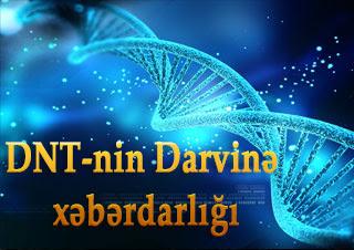 DNT-nin Darvinə xəbərdarlığı
